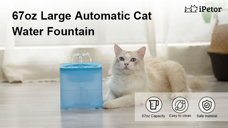 automatic cat water fountain banner