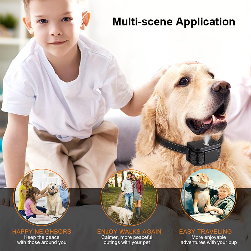 multi-sence application