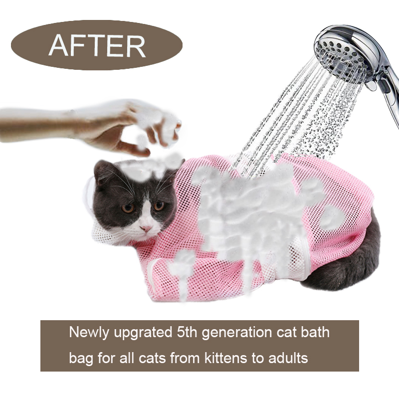 cat washing