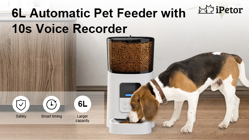 pet automatic feeder banner