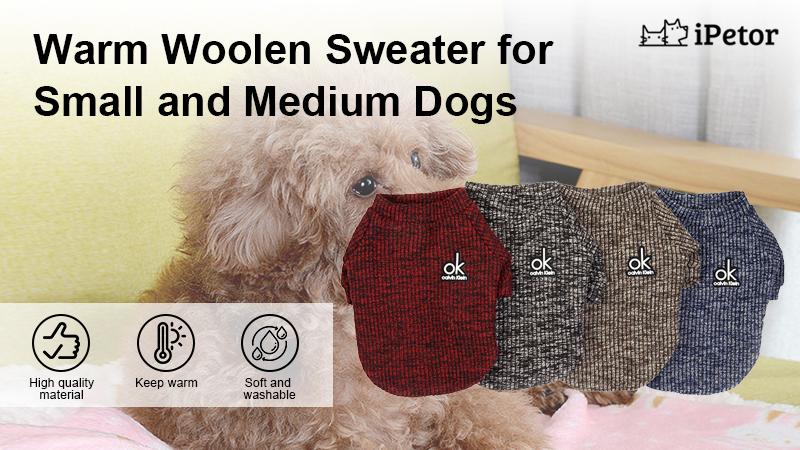 D100 pet sweater banner 1