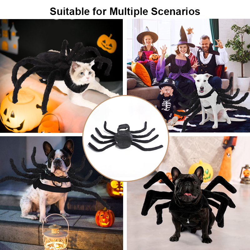 pet halloween costume can be used in mutiple scenes