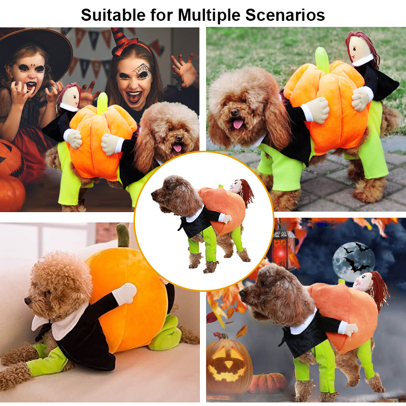 Halloween dog pumpkin costume suitable for various occasions