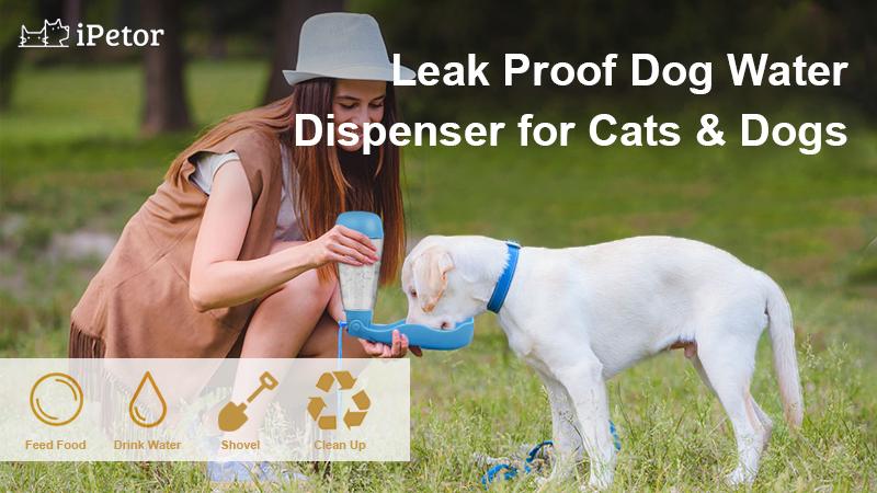 D41 pet water cup banner 1