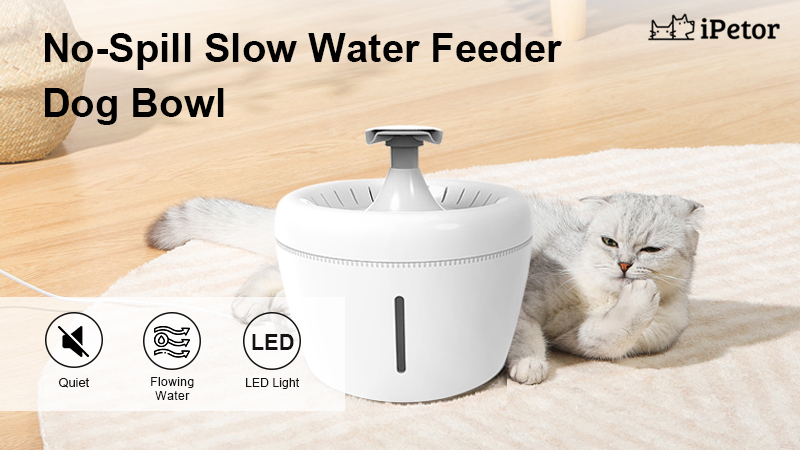 apple shaped cat water fountain
