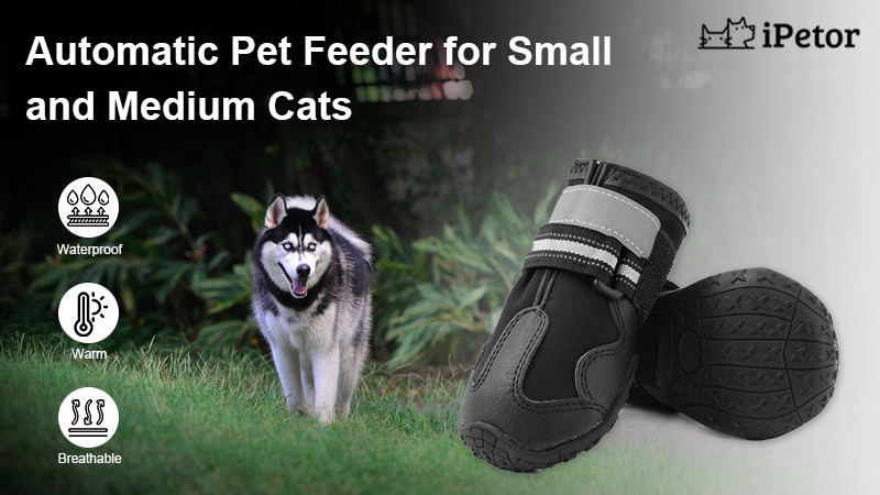 breathable dog shoes banner 1