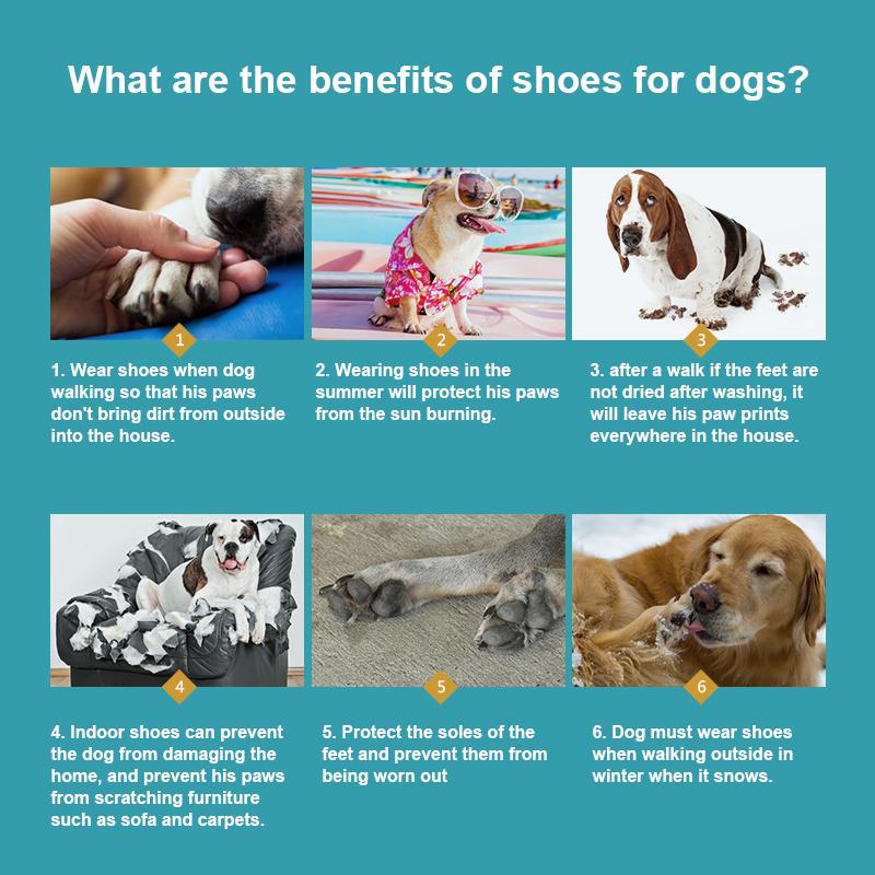 breathable dog shoes details 4