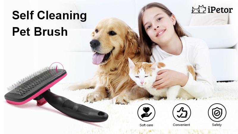 pet brush banner