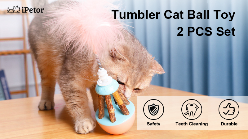 cat toy ball banner 1