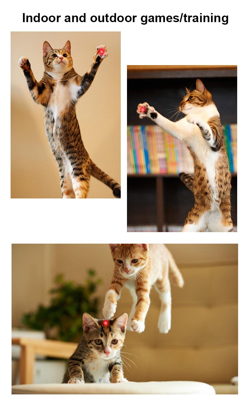cat toy laser pointer details 6