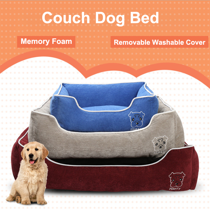 couch dog bed