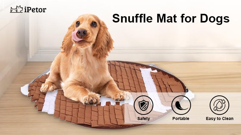 dog mat banner