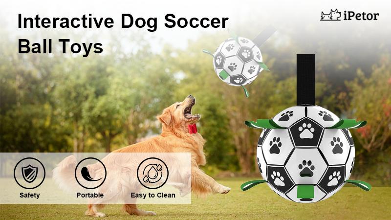 dog ball toy banner 1