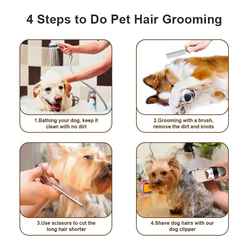 grooming steps