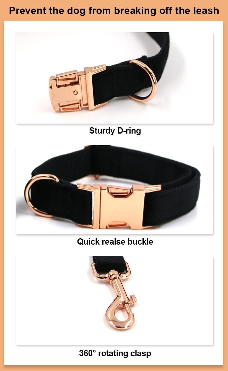 dog leash details 2