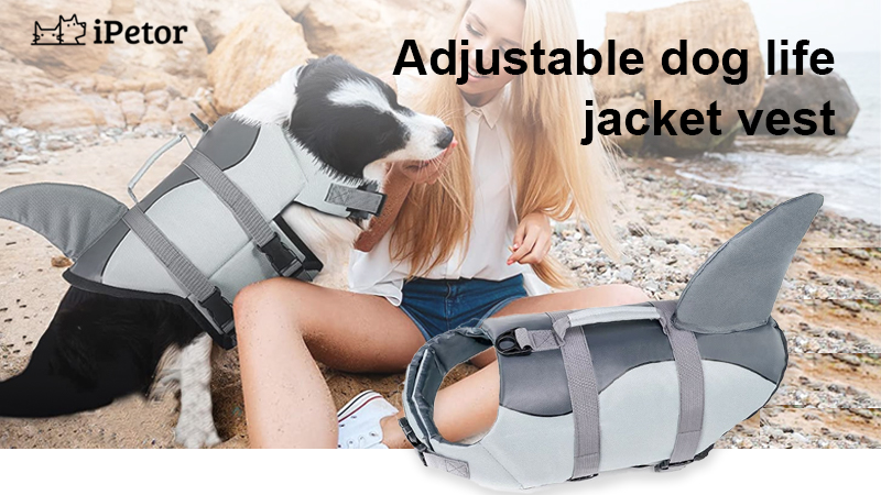 dog life jacket banner 1
