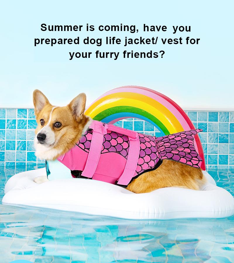 dog life jacket details 1