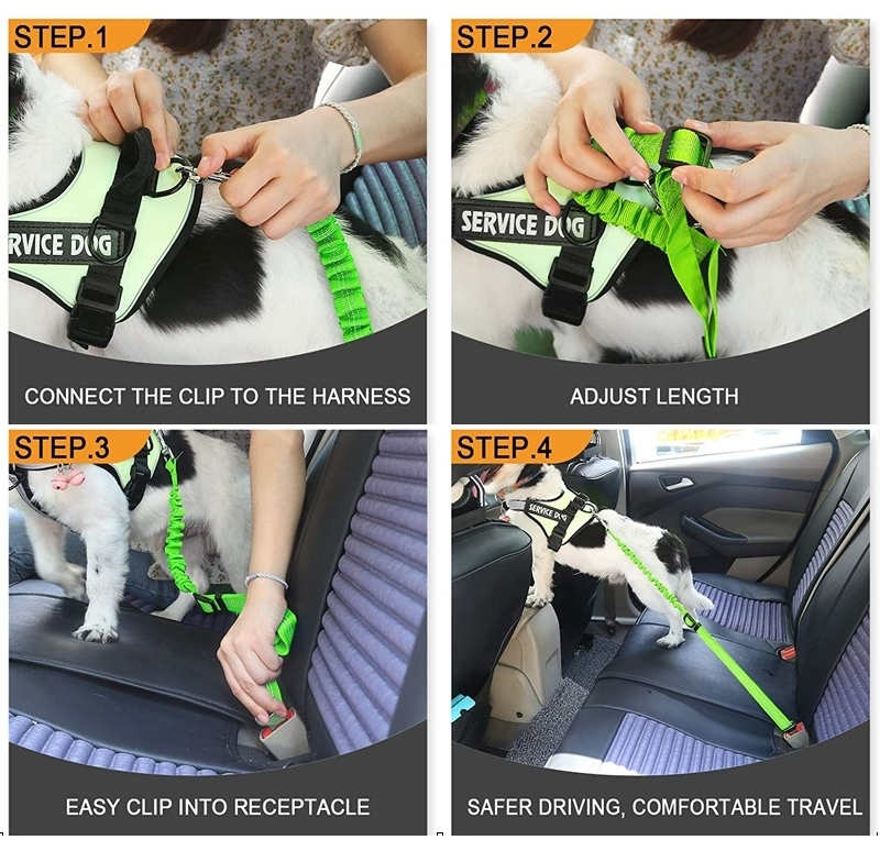 how to use dog seat belt