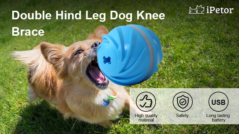 dog toy ball banner 1