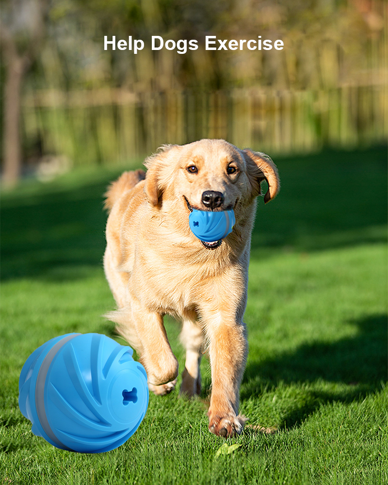 dog toy ball details 2