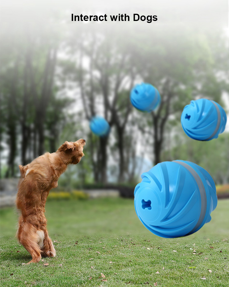 dog toy ball details 6