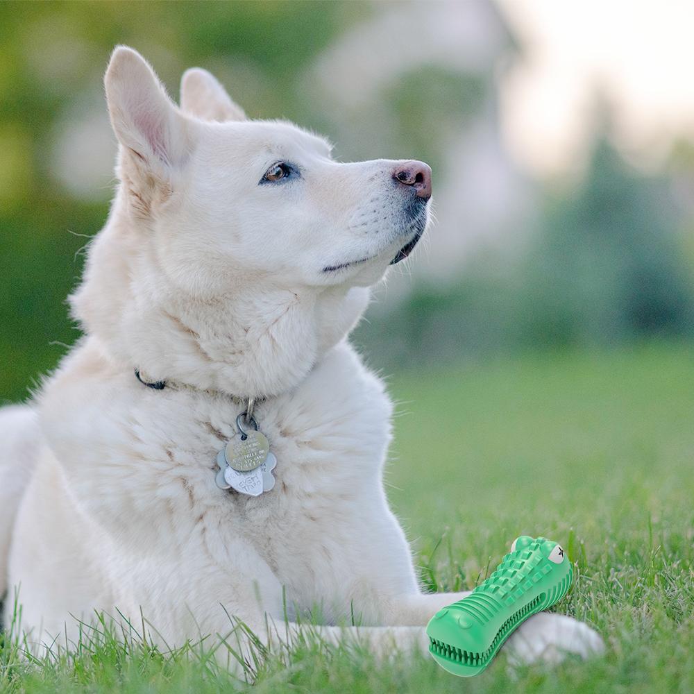 dog-toy-use-scene3