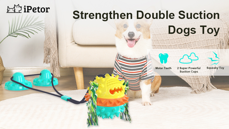 dog toys banner 1