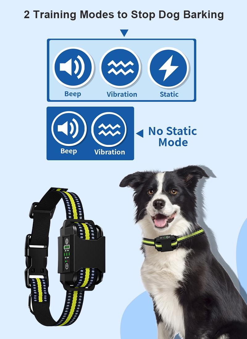 dog training collar details 2