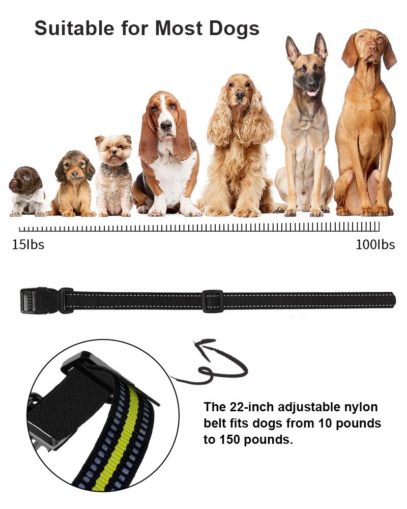 dog training collar details 3