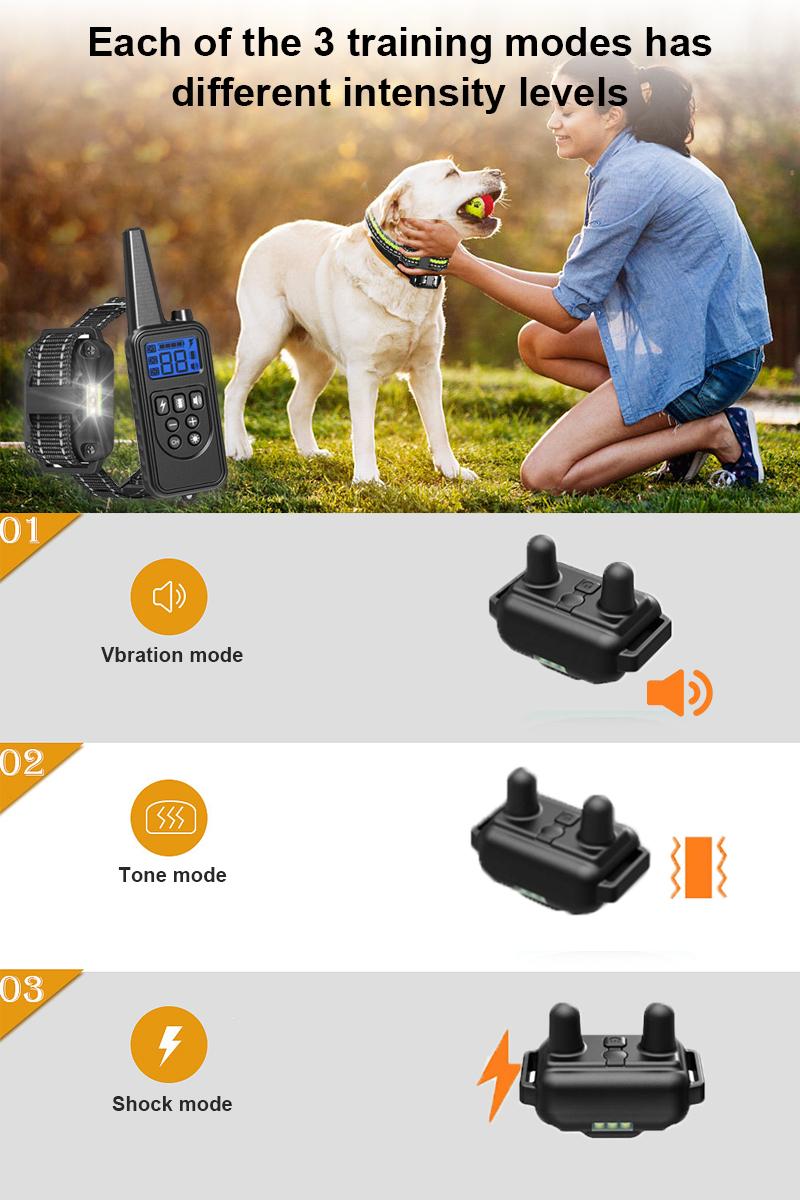 dog training colar detailed image