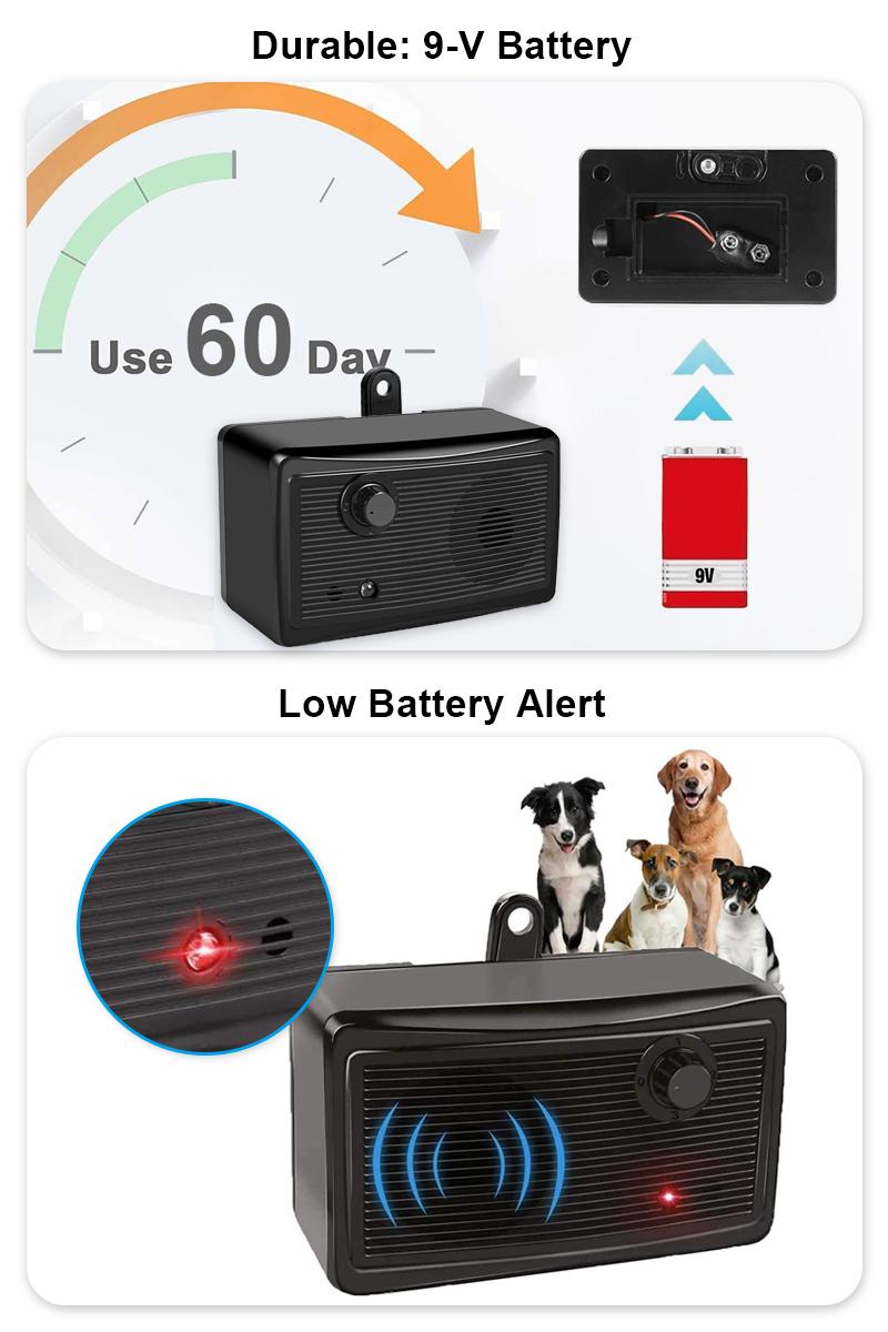 dog training collars details