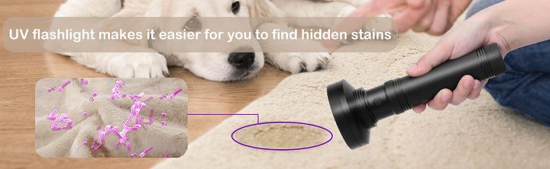 find hidden stains