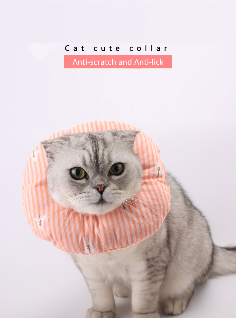 cat wear coller