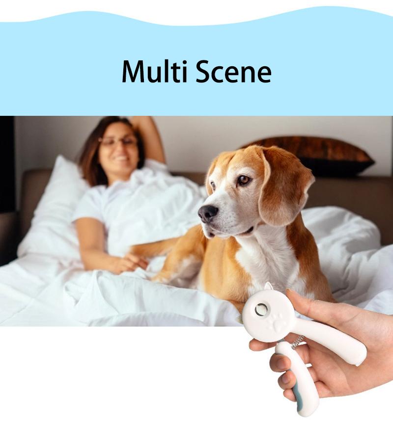 multi scene