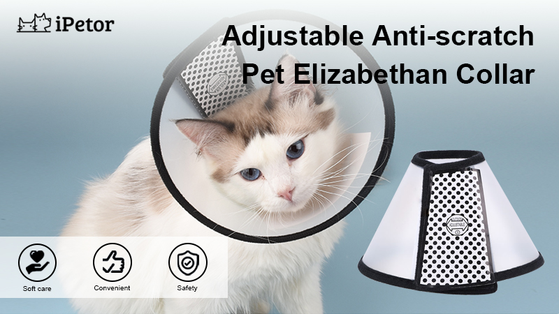 pet anti scratch headgear banner 1