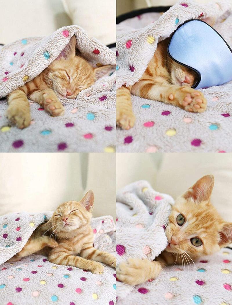 pet blanket details 5