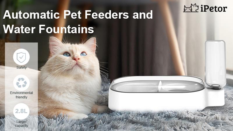 pet bowl banner 1