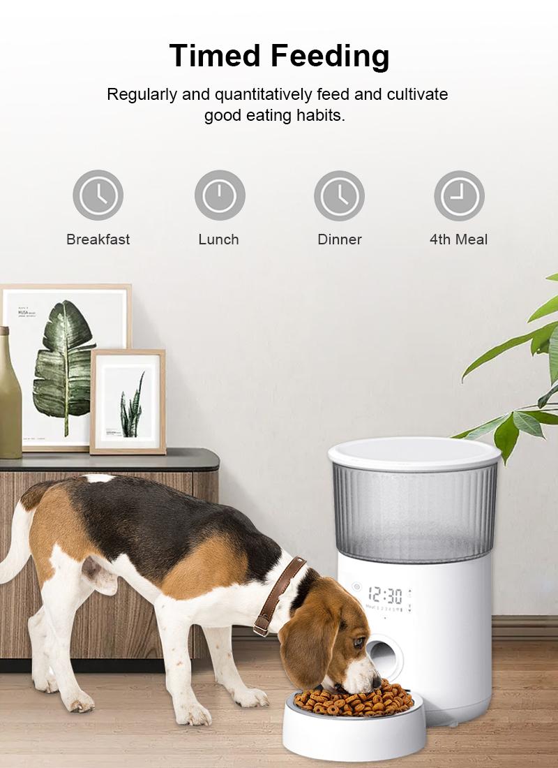 pet feeder details 2