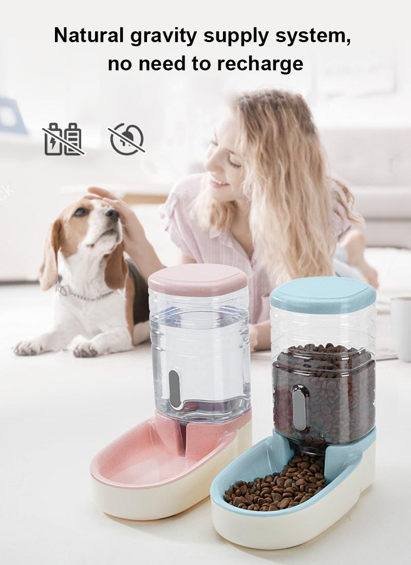 pet feeder set operation mode