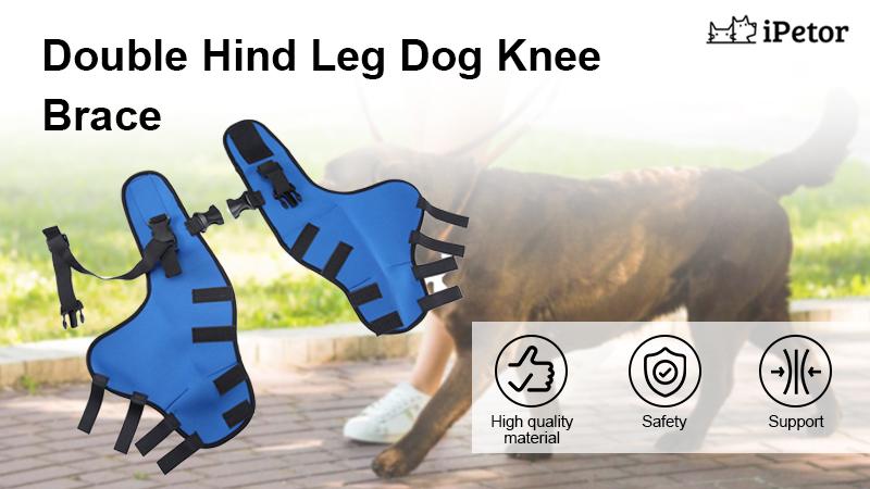 pet knee pads banner 1
