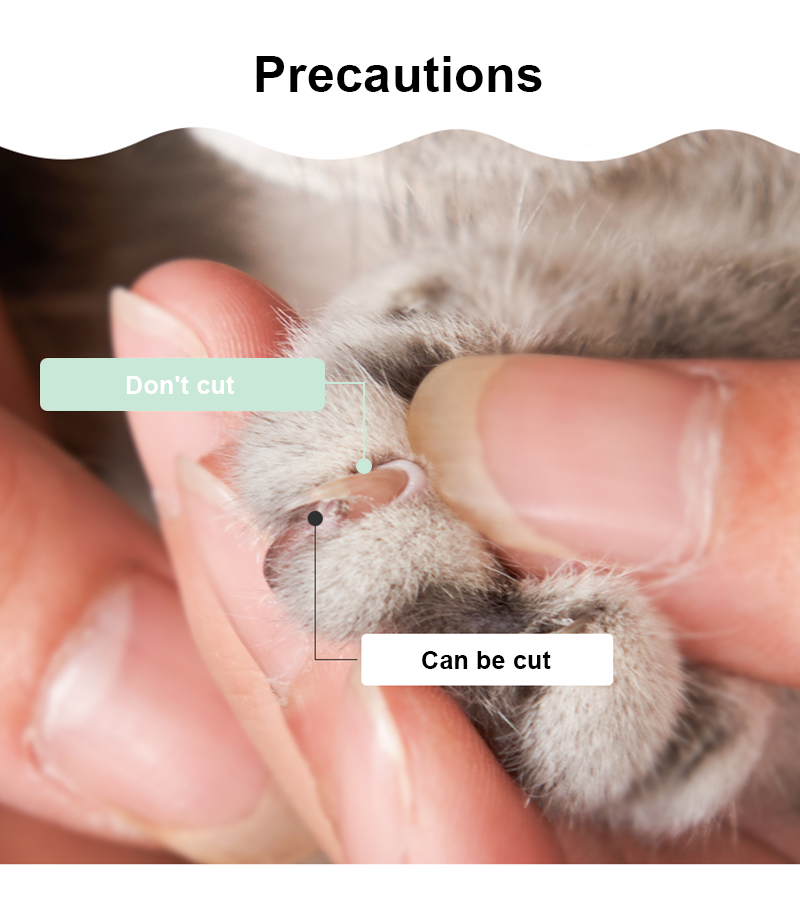 pet nail clippers banner 5