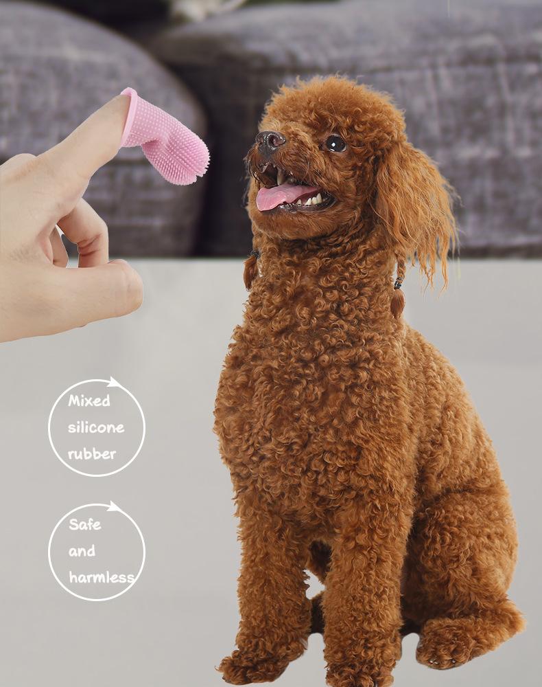 dog likes fingerbrush