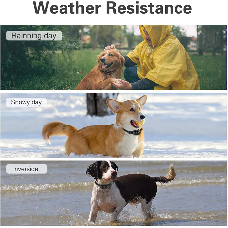 weather resistance